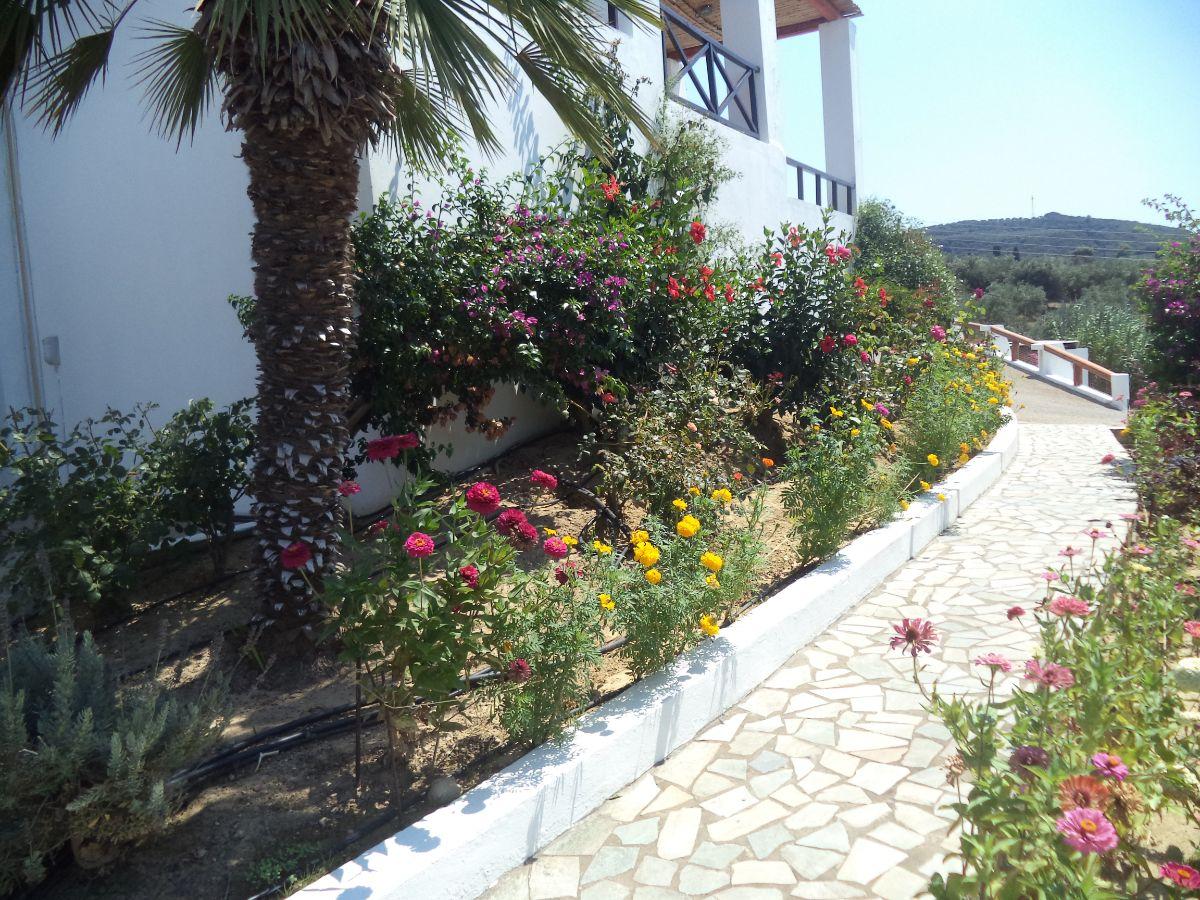 27 Front Garden